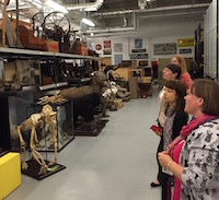 Museum educators visiting Leeds Discovery Centre on a GEM training day